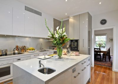 White/Metallic Lacquer Kitchen Design
